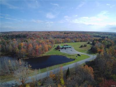 Jefferson County, Lewis County Single Family Home For Sale: 1838 Fish Creek Road