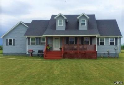 Single Family Home For Sale: 31777 Us Route 11