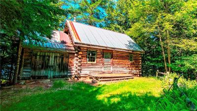 Arietta NY Single Family Home For Sale: $450,000