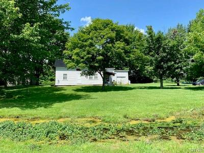 Adams Single Family Home For Sale: 12073 & 12051 State Route 178