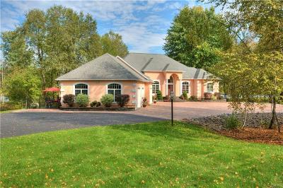 Lysander NY Single Family Home For Sale: $999,777