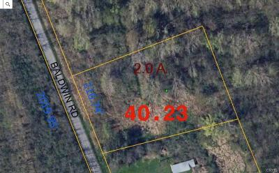 Residential Lots & Land For Sale: 7220 Baldwin Road