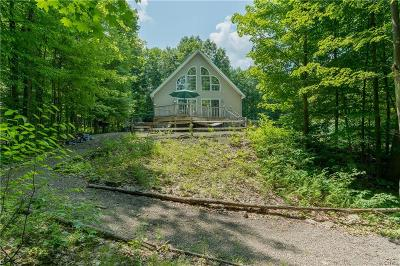 Orwell NY Single Family Home For Sale: $209,000