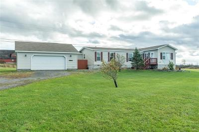 Jefferson County, Lewis County Single Family Home For Sale: 27178 County Route 54