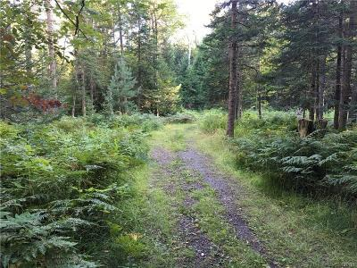 Forestport Residential Lots & Land For Sale: 165 Little Beaver Lake Road