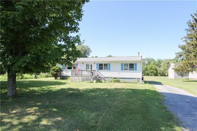 Lowville Single Family Home For Sale: 8139 State Route 812