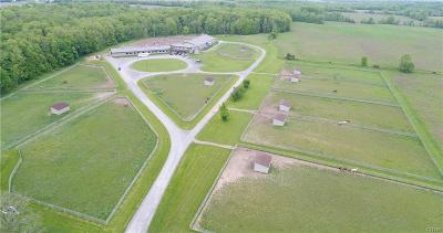 Genesee County, Livingston County, Monroe County, Ontario County, Orleans County, Wayne County Farm & Ranch For Sale: 6300 & 0 County Road 41