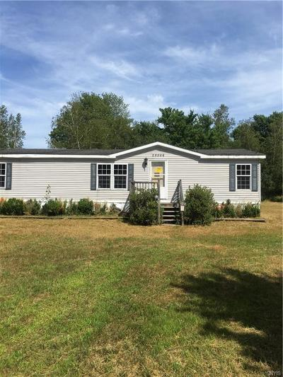 Single Family Home For Sale: 25566 County Route 37