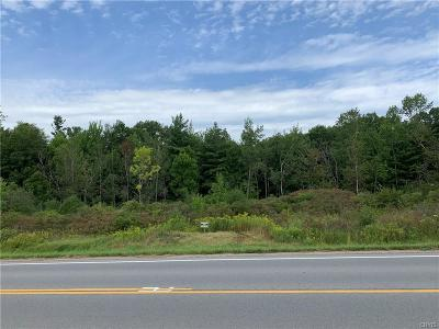 Commercial For Sale: 44025 Co Route 100