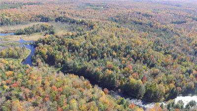Forestport Residential Lots & Land For Sale: 11920 Bellingertown