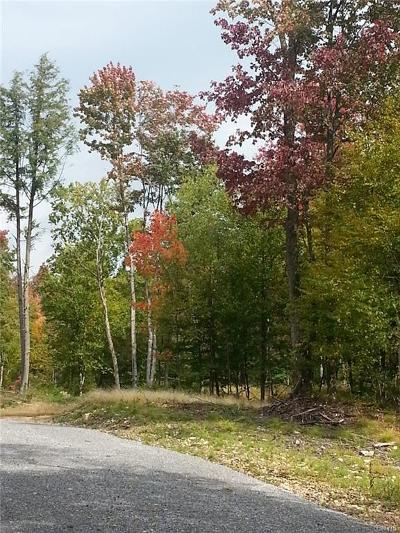 Forestport Residential Lots & Land For Sale: 4072 Lakeview Road