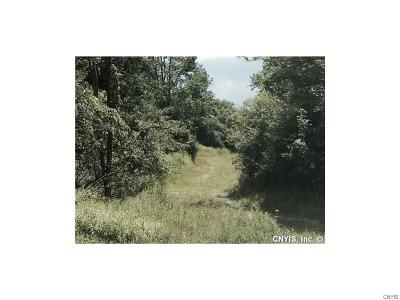 Cazenovia Residential Lots & Land For Sale: 00 Route 20 W Highway