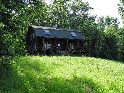 Naples Single Family Home For Sale: 6658 W Gannett Hill Road