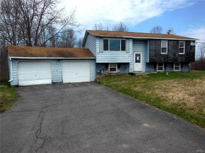 Single Family Home For Sale: 1327 State Route 31