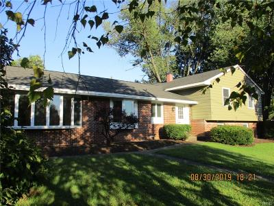 Rome Single Family Home For Sale: 1742 N George Street