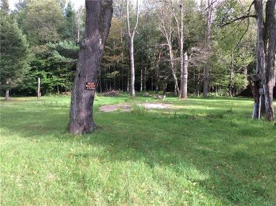Forestport Residential Lots & Land For Sale: 5054 Scamott Road