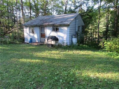 Forestport Single Family Home For Sale: 176 Black River Canal Road