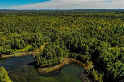 Forestport Residential Lots & Land For Sale: Lot #12 Blue Waters Road