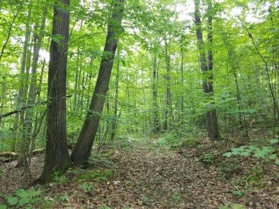 Residential Lots & Land For Sale: 00 Stony Ridge Road