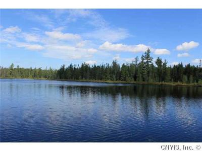 St Lawrence County Residential Lots & Land A-Active: 00 Lems Pond/Off Sh 3