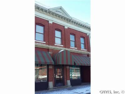 Seneca Falls NY Commercial For Sale: $94,900