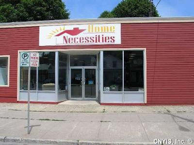 Oswego-City Commercial For Sale: 133-135 E Bridge Street