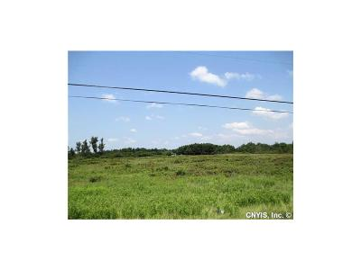 Hounsfield NY Residential Lots & Land A-Active: $37,500