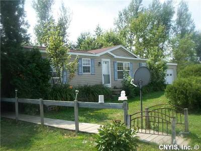 Single Family Home A-Active: 16790 County Route 12