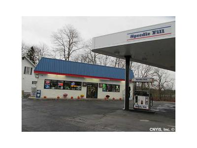 Waterloo NY Commercial A-Active: $425,000
