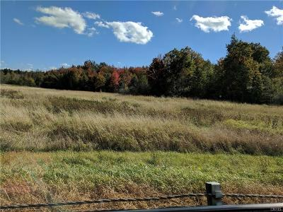 Residential Lots & Land A-Active: Us Route 11