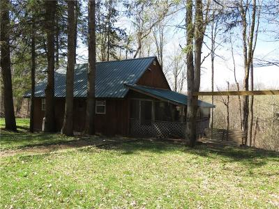 Single Family Home A-Active: 320 County Route 47