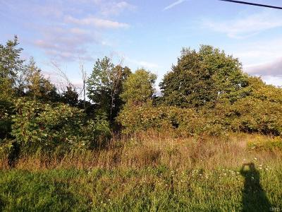 Residential Lots & Land For Sale: 36844 County Route 46