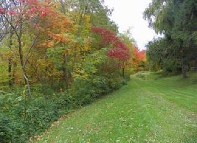 Sheridan Residential Lots & Land For Sale: 2218 Route 39