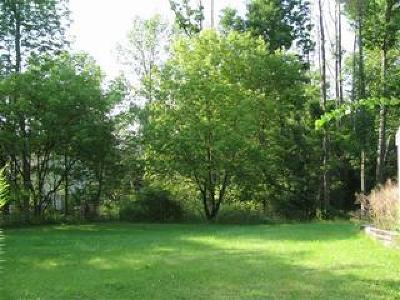 Chautauqua County Residential Lots & Land For Sale: 34 West Fairmount