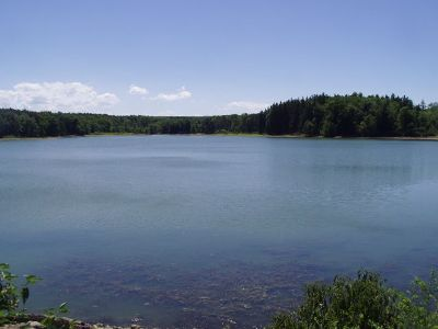 Forestville Lake/Water For Sale: Hanover , Hopper, Rt 39