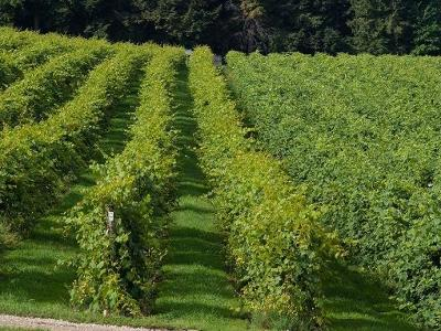 Northeast Pa NY Farm For Sale: $1,900,000