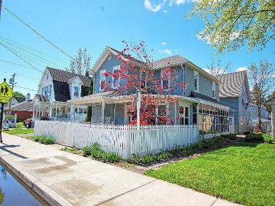 Bemus Point Multi Family Home For Sale: 15 Main St