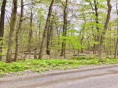 Bemus Point Residential Lots & Land For Sale: Walker Rd.