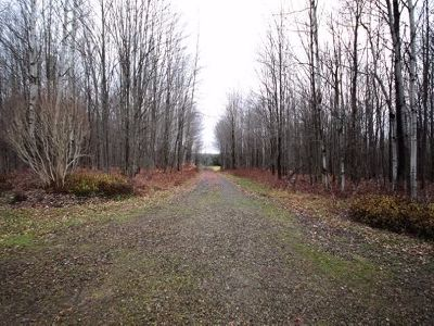 Jamestown NY Residential Lots & Land For Sale: $76,500
