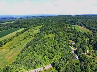 Frewsburg Residential Lots & Land For Sale: Frew Run Rd