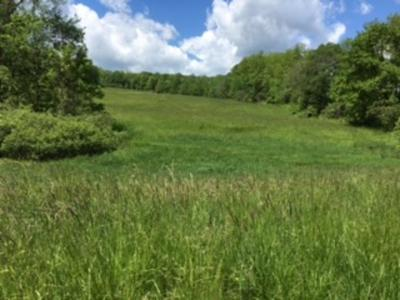 Lakewood NY Residential Lots & Land For Sale: $60,000