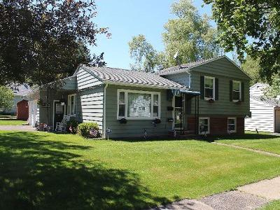 Single Family Home For Sale: 401 Hebner St.