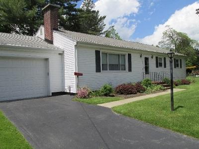 Ashville, Busti, Falconer, Frewsburg, Gerry, Jamestown, Lakewood Single Family Home For Sale: 126 Huxley Street