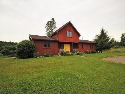 Mayville Single Family Home For Sale: 4473 Chautauqua Stedman Rd.