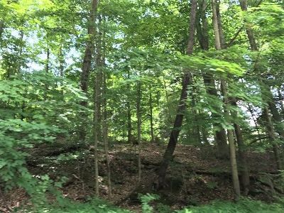 Ashville NY Residential Lots & Land For Sale: $89,000