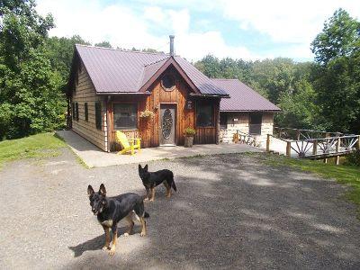 Gowanda Single Family Home For Sale: 9248 Broadway Road