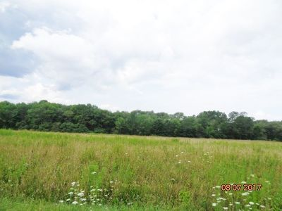 Residential Lots & Land For Sale: Wright Rd.