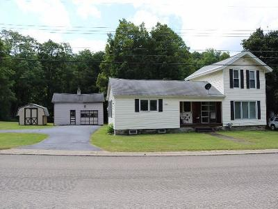 Randolph Single Family Home For Sale: 3991 Route 394