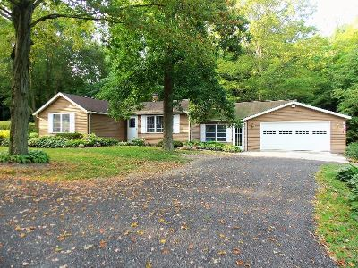 Westfield Single Family Home For Sale: 7325 Bliss Road