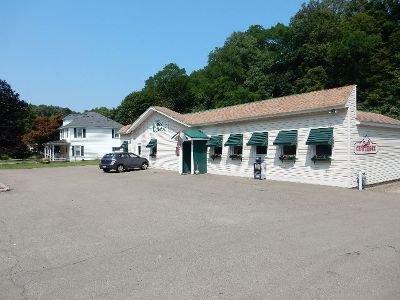 Bemus Point Commercial For Sale: 3062 Route 430